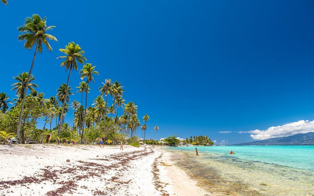 10 cose da non perdere a Moorea spiaggia con palme alte, sabbia bianca e mare turchese