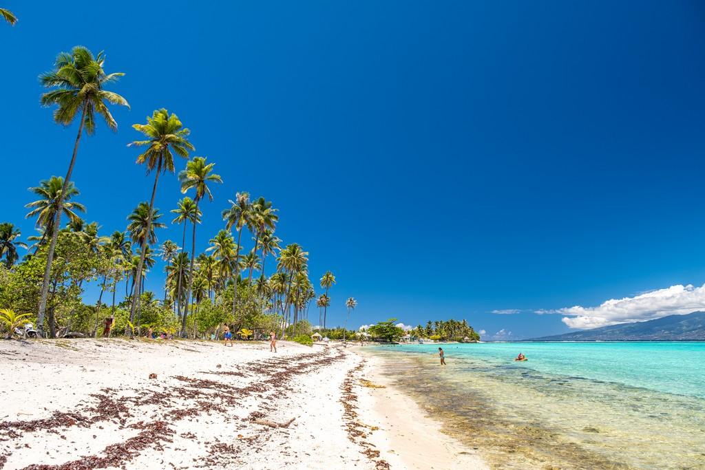 Polinesia low cost spiaggia con palme alte, sabbia bianca e mare turchese