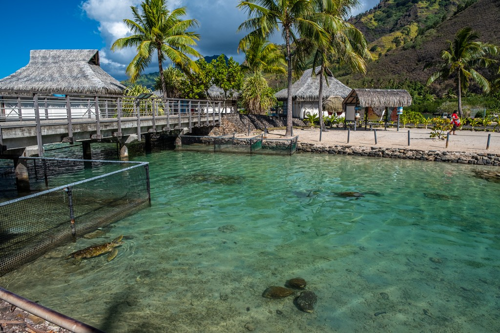 laguna con bungalow