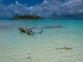guida rangiroa isole con palme sabbia bianca e laguna cristallina bassa squalo