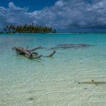 Polinesia Francese: guida a Rangiroa, la maggiore delle Tuamotu fai da te