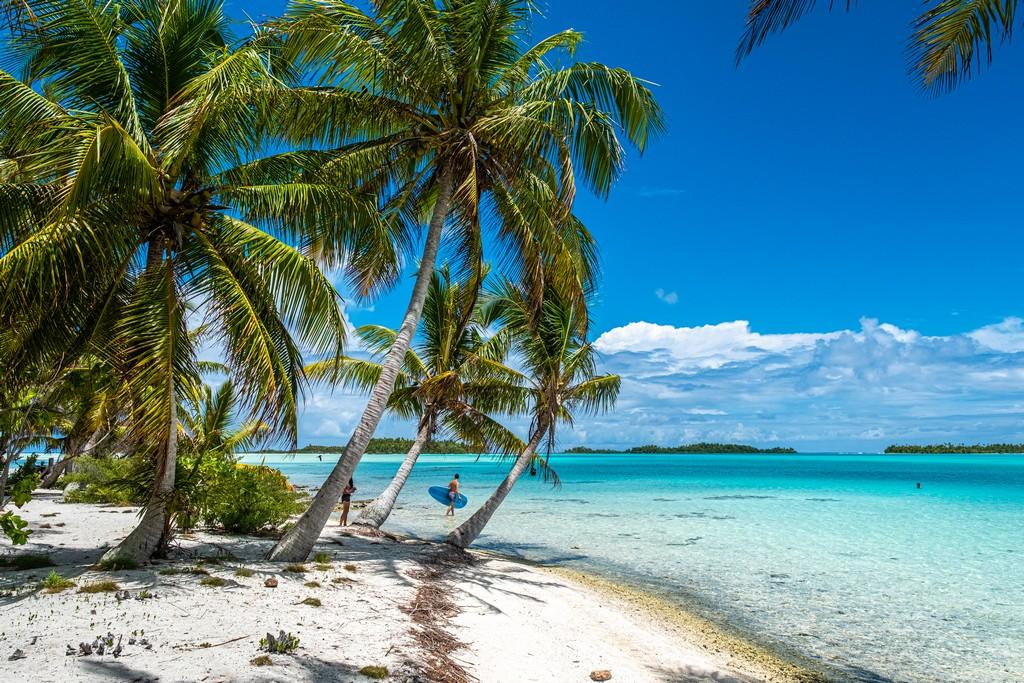 isole con palme sabbia bianca e laguna cristallina bassa