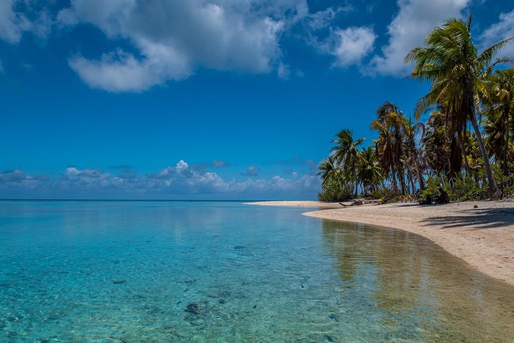 Polinesia low cost spiaggia con palme sulla laguna