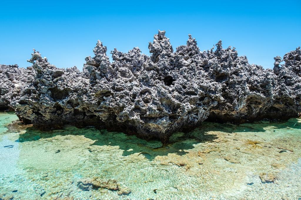 guida a Rangiroa, affioramenti corallini erosi dal vento