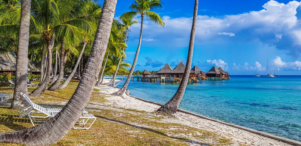 spiaggia con palme e overwater