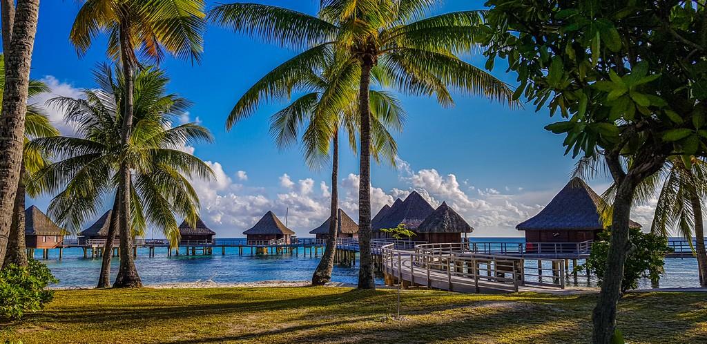 resort con overwater e palme
