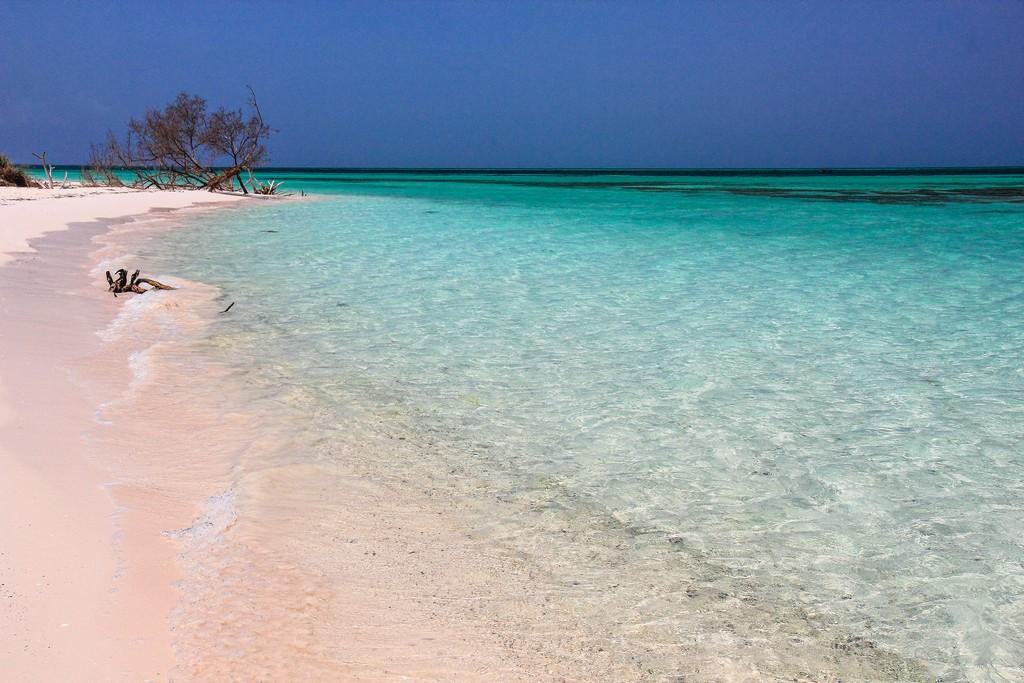 spiaggia di sabbia bianca con mare turchese con mangrovie
