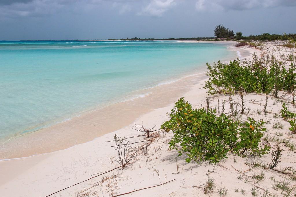 spiaggia di sabbia bianca con mare turchese e vegetazione