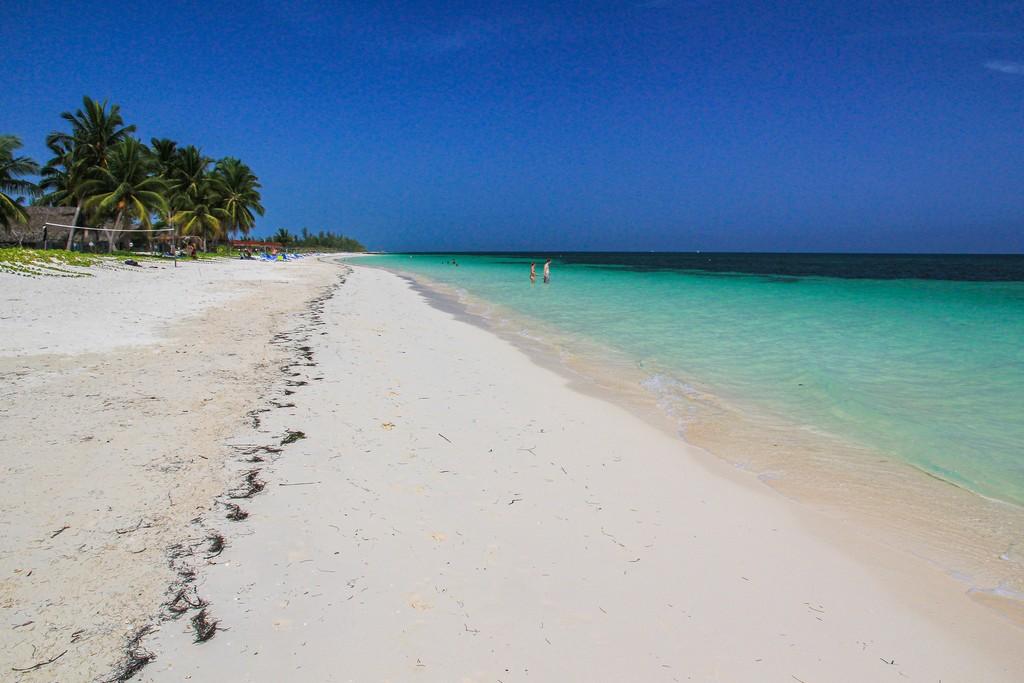 spiaggia di sabbia bianca con mare turchese e palme