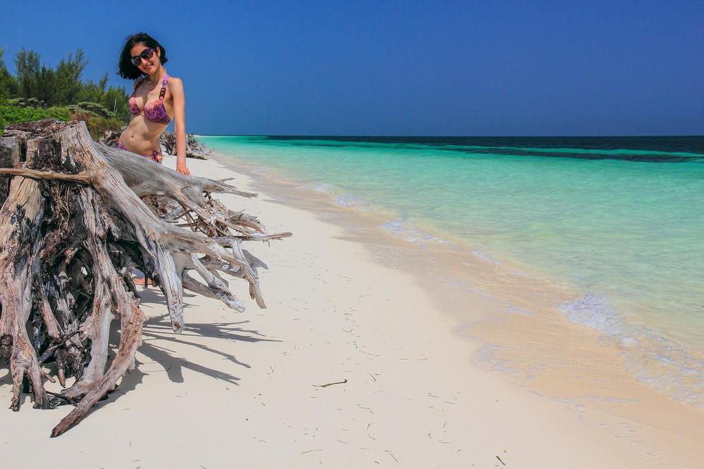 spiaggia di sabbia bianca con mare turchese e albero secco con persona