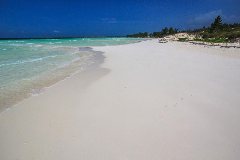 spiaggia di sabbia bianca con mare turchese e vegetazione bassa
