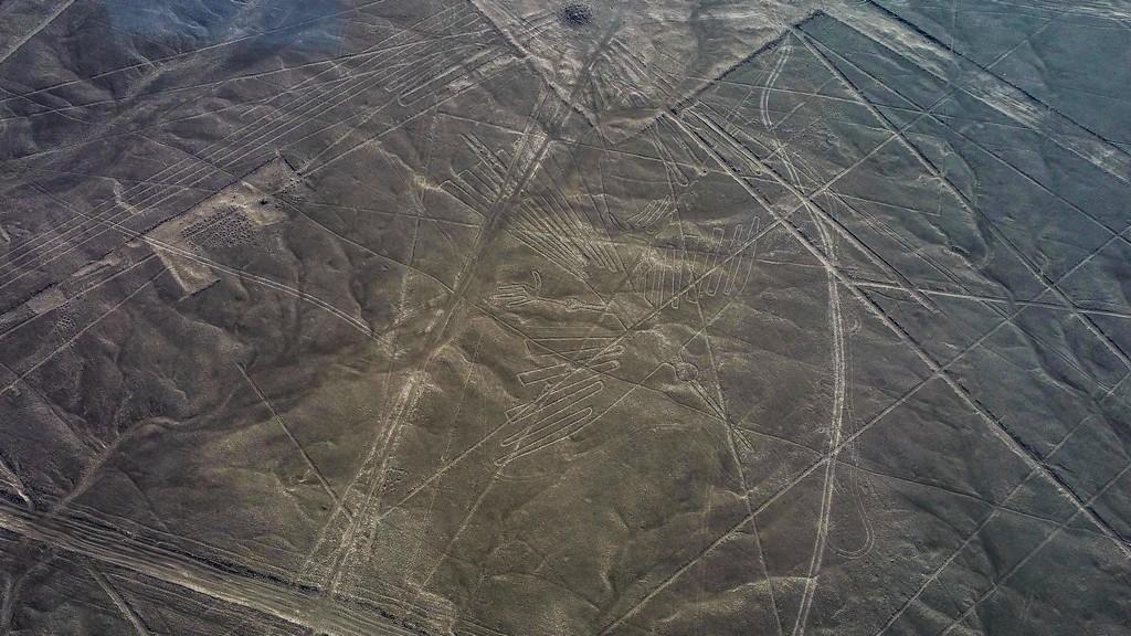 Le linee di Nazca - il condor