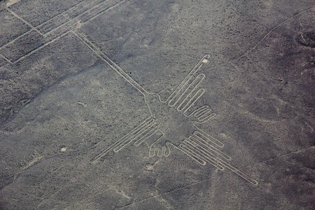 Il colibrì - linee di Nazca