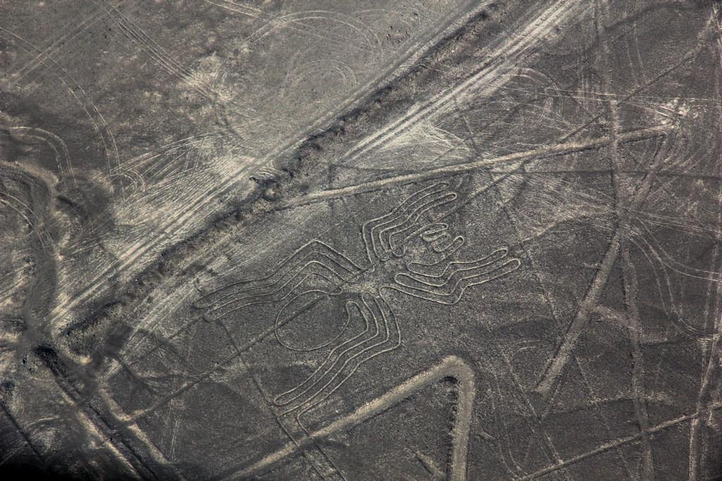 Le linee di Nazca - il ragno