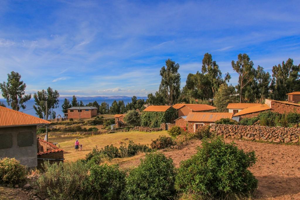 come visitare Amantaní e Taquile panorama sul lago con alberi