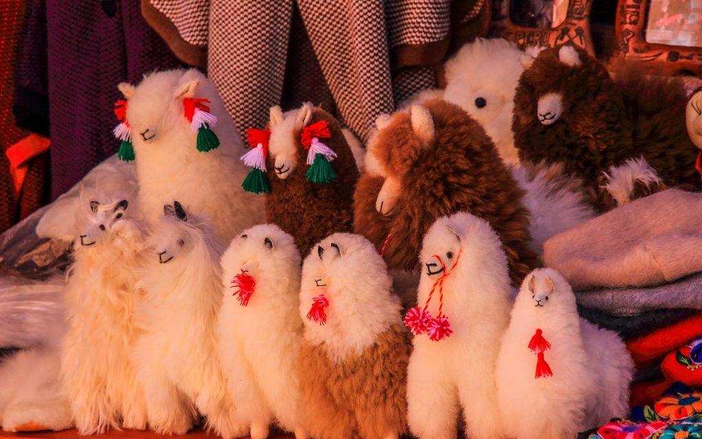 itinerario in peru in 2 settimane, souvenir lama