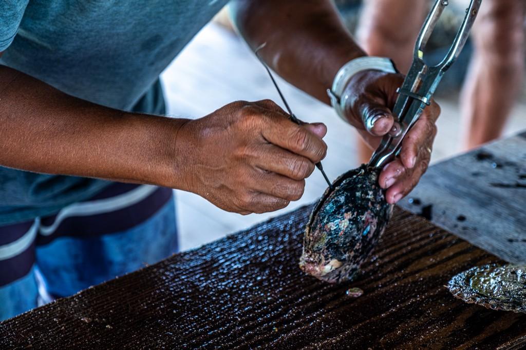 lavorazione di un'ostrica perlifera