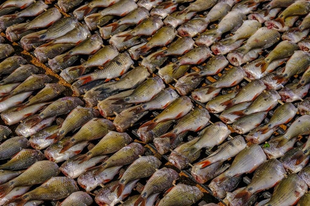 pesciolini messi a essiccare