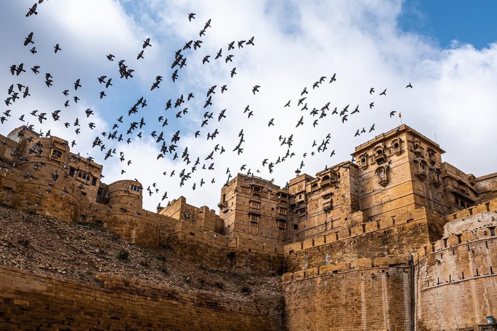 piccioni volano sul forte