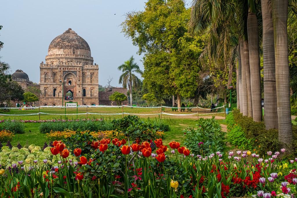 Impressioni a caldo in India giardino con Fiori a Delhi