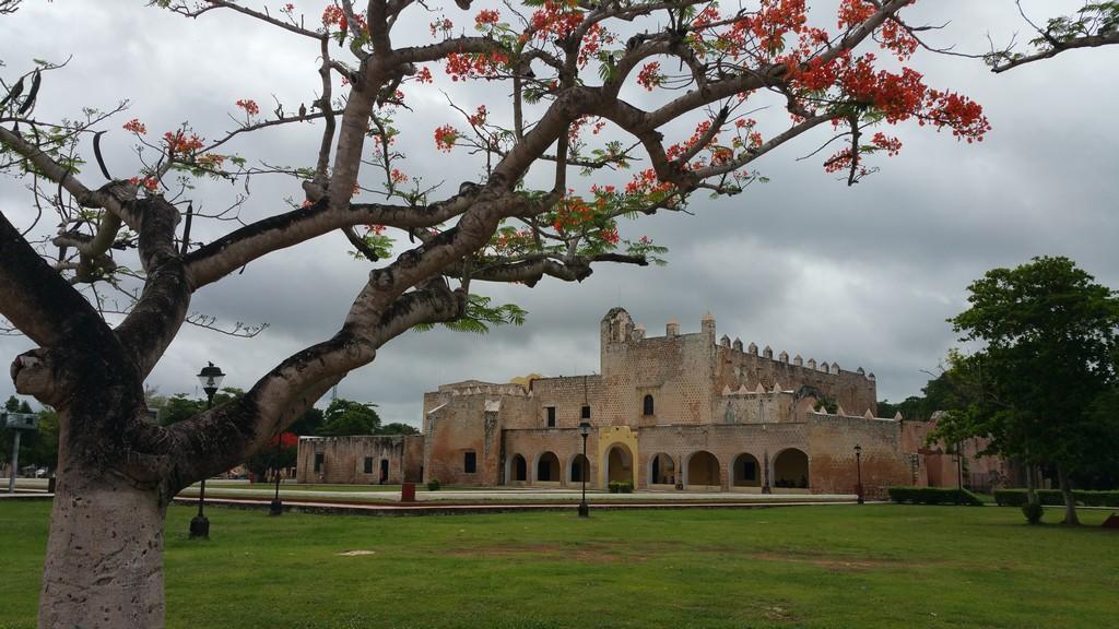 Cosa vedere a Valladolid albero con monastero dietro