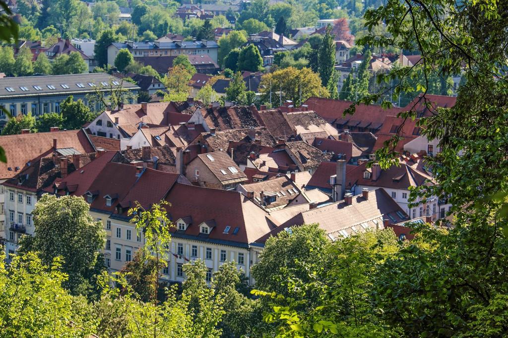 cosa vedere a Lubiana vista dall'alto dei tetti