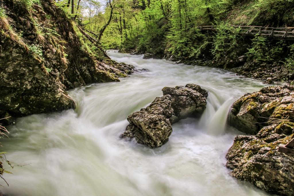 gola di vintgar  rapide nel fiume