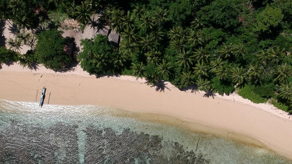 vista aerea di una barca sulla spiaggia