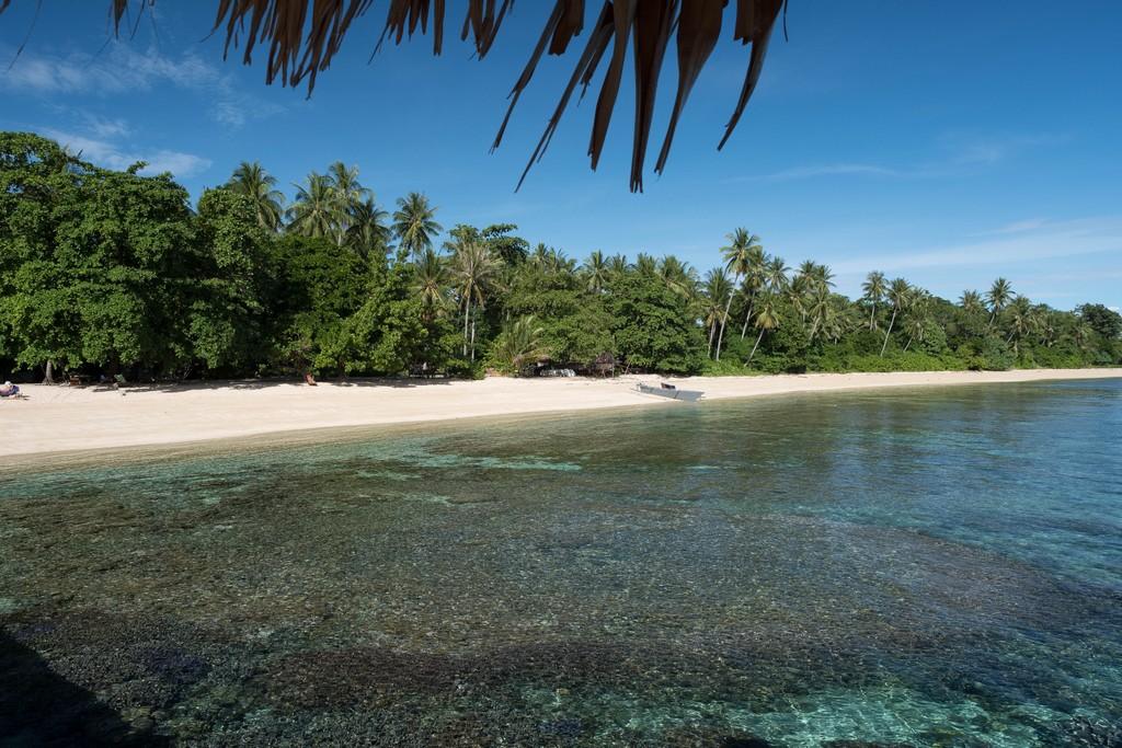 L'house reef di Bangka Island (Coral Eye Resort)
