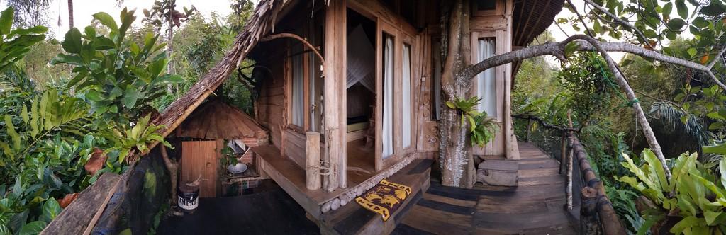 dove dormire per visitare il Kawah Ijen casa di legno sull'albero