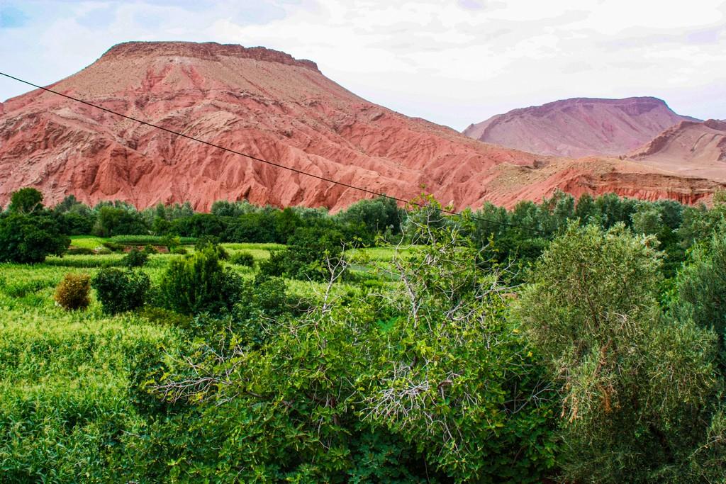 vallata verde e montagna brulla