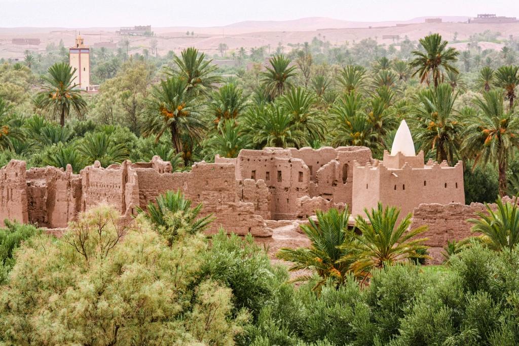 kasbah nel palmeto