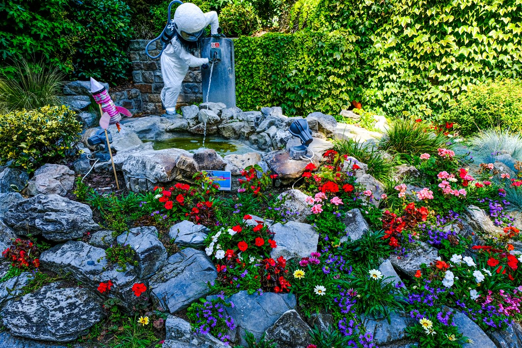 aiuola del giardino con fiori