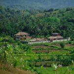 Dove dormire a Kuta Lombok: Owa Lodge