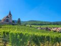 guida alla route des vins sud Alsazia