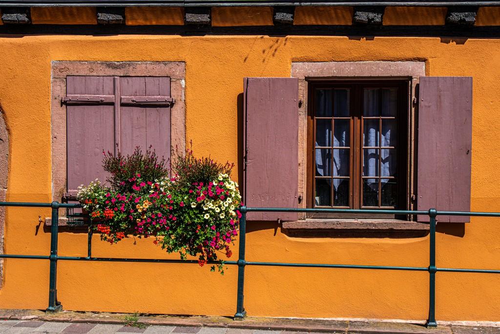 finestre aperte e chiuse con fiori