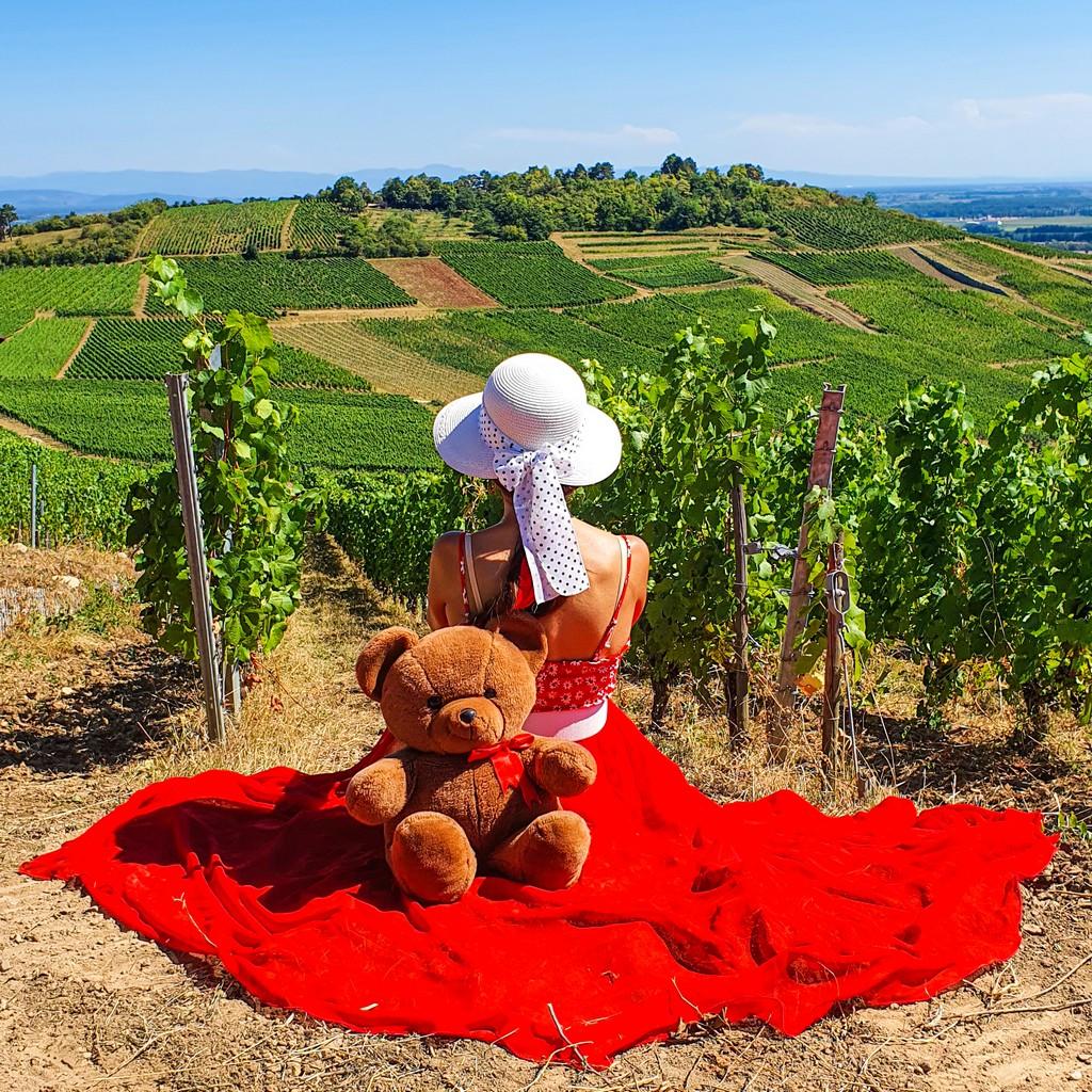 vigneti più instagrammabili d'Alsazia ragazza con orsacchiotto sulle vigne